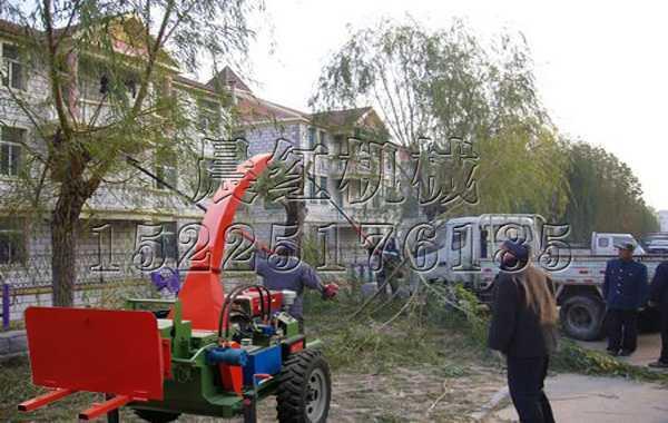 发往辽ningde社区园林绿化树枝fen碎机